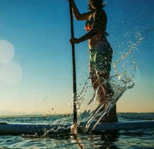 stand_up_paddleboard_løberne
